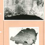 Fotografická dokumentace fragmentů likvidovaných písemných materiálů, nalezených v požářišti před objektem Krajské správy SNB Brno v katastru obce Kanice (okr. Brno – venkov) dne 8. 12. 1989
